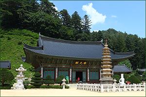 Готовимся к зимней олимпиаде в Корее