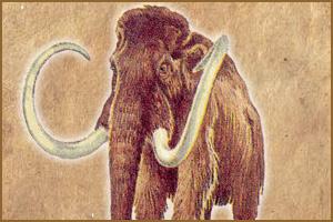 Итоги конкурса по сбору мамонтов